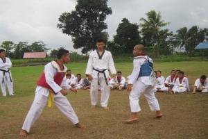 Taekwondo Putra